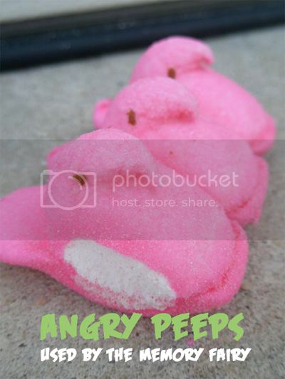 Angry Peeps used by The Memory Fairy Image